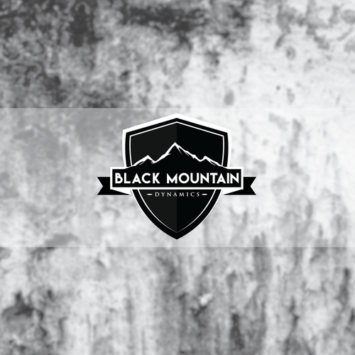 Black Mountain Dynamics Security Company