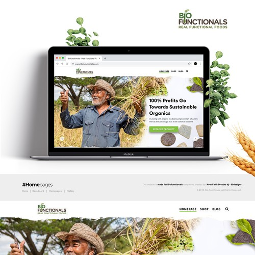 New Rice Bites Snack Product Website Design
