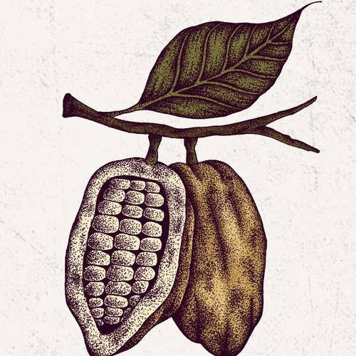 Logo design for Elevate