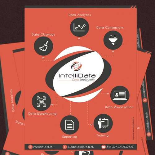 IntelliData Flyer