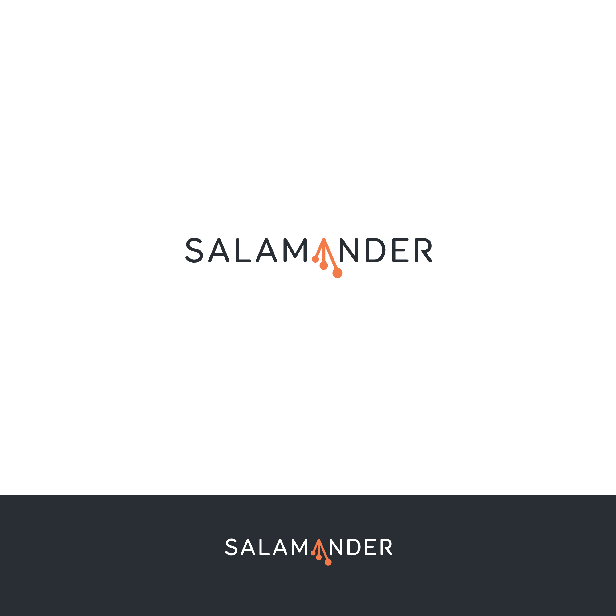 Design a logo for salamander.ai (visual tool for researchers)