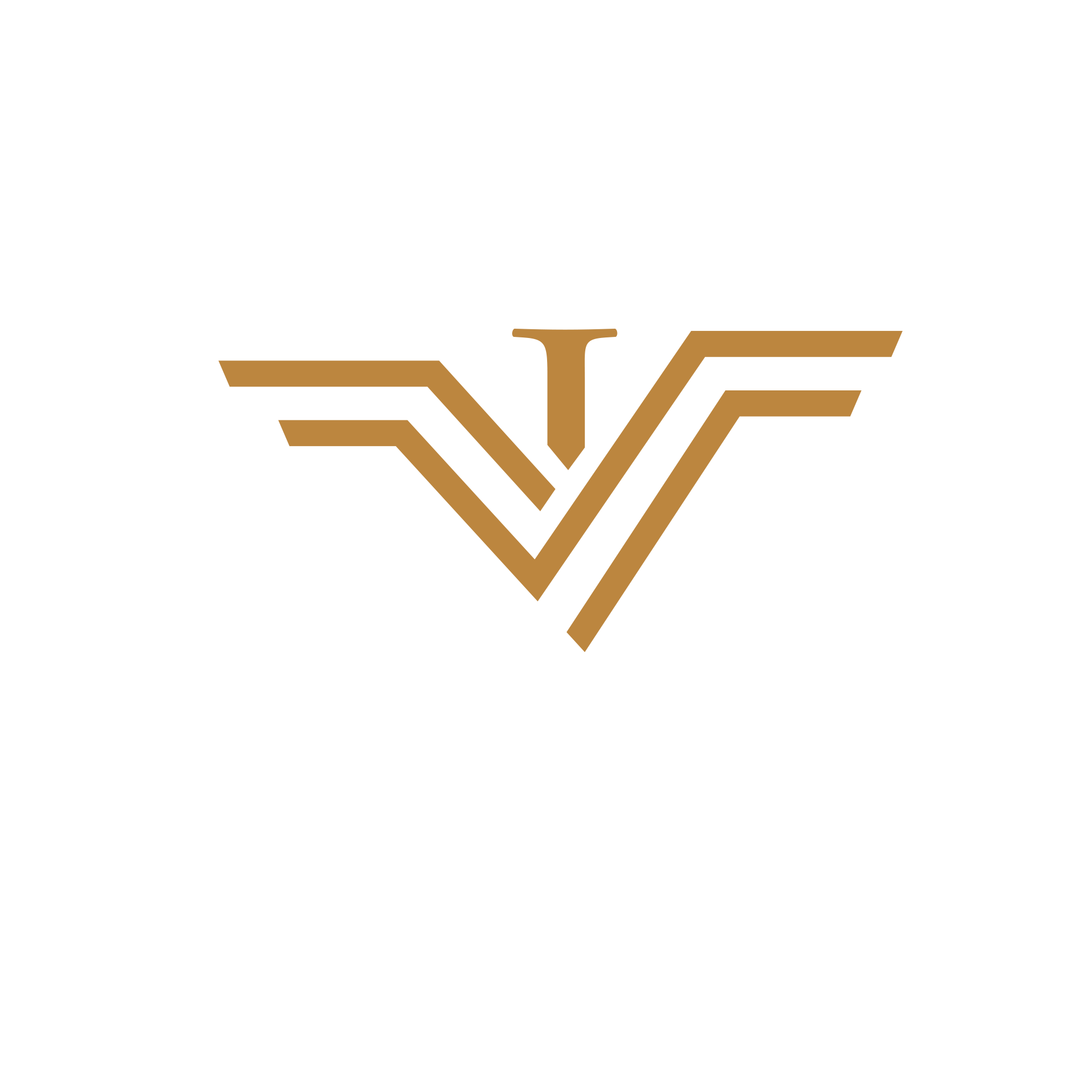Vision-Immo: Aerial photographs and videos of real estate objects