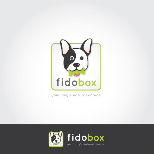 Logo for dog treat subscription box: FidoBox