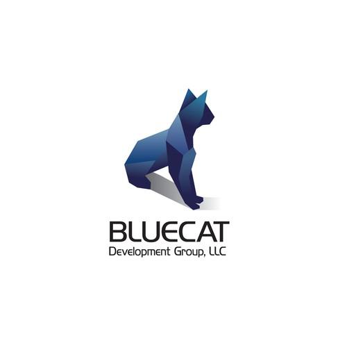 Startup Technology Company