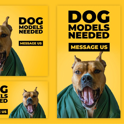 Banners for dog models