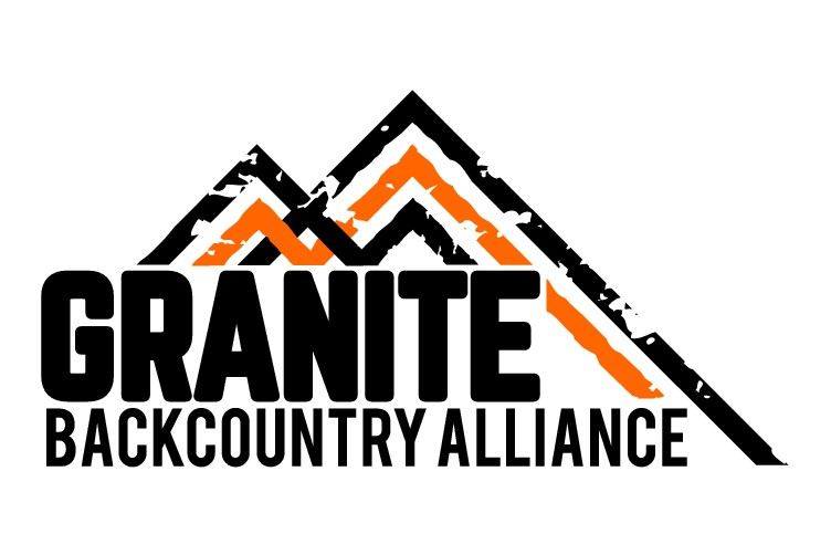 Logo for Ski Group - Vintage Chic Wilderness Skiing Logo