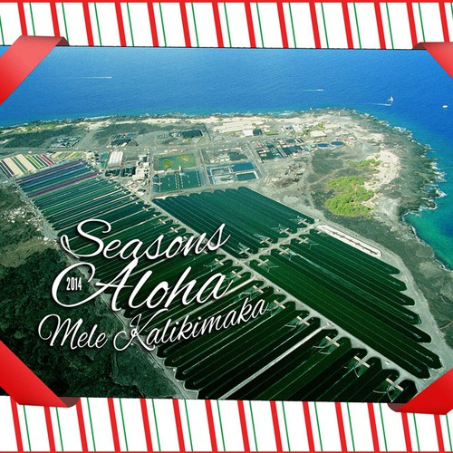 Holiday card for Nutrex Hawaii