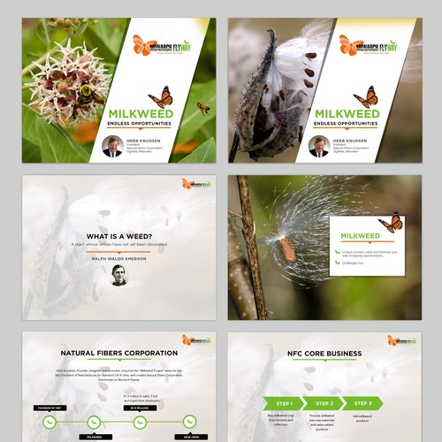 Powerpoint presentation design for Protect Monarch Habitat by Creating Useful Products from Milkweed