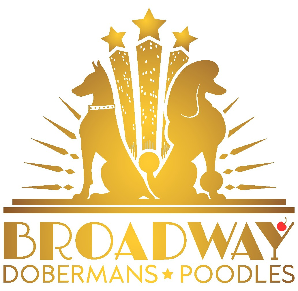 NYC Broadway Art Deco Style Dog Kennel Logo - Broadway Dobermans & Poodles
