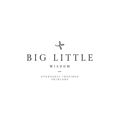 Proposal for Big Little Wisdom