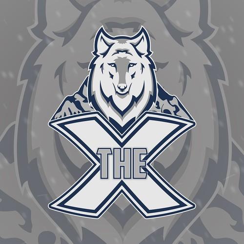 The X Logo