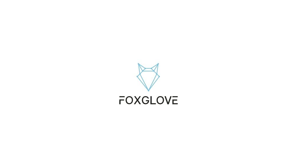 Challenging Logo Design for a Clever Startup Looking to Disrupt the Financial Institutions Market!