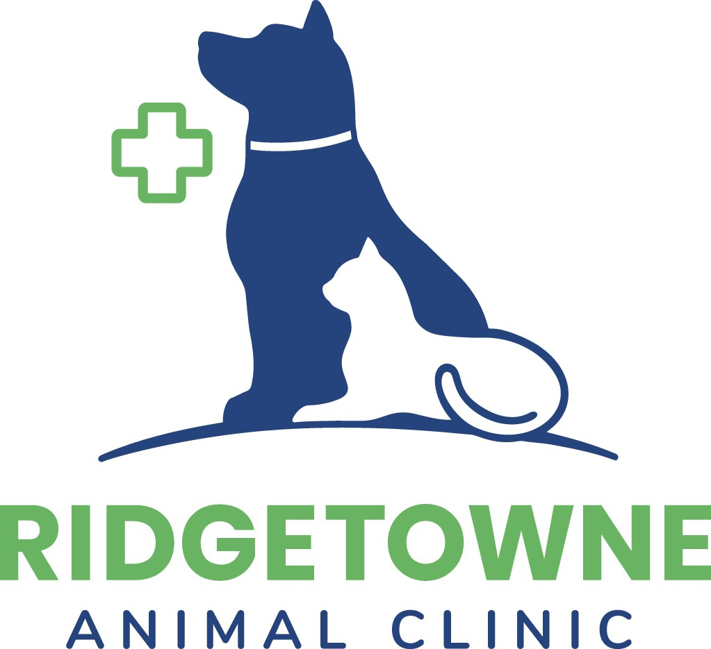 Please make our awesome animal hospital pop!