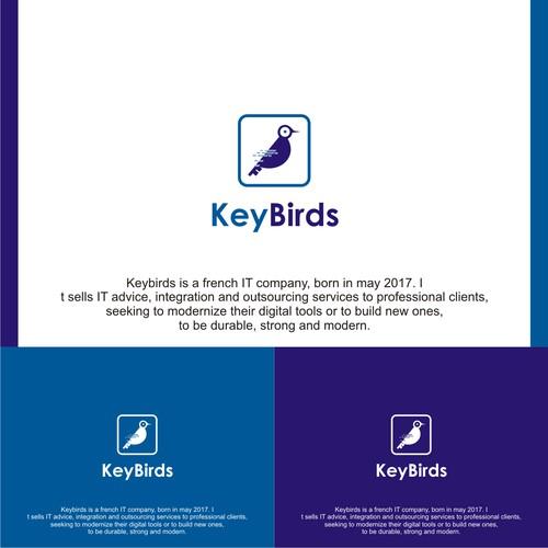 key And Bird concept