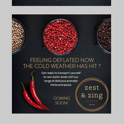 Banner design for Zest & Zing