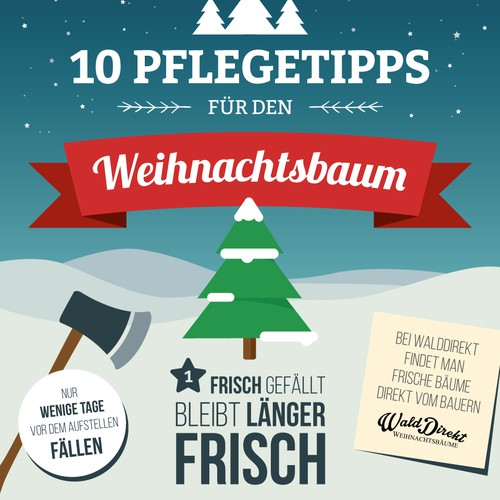 WaldDirekt Infographic | 10 tips for your Christmas Tree