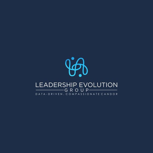 Leadership Evolution Group