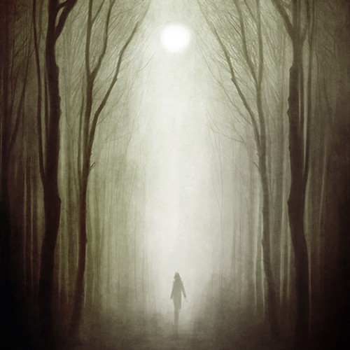 Alternate Whitewood Book Cover Design