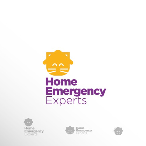 Home Emergency Experts