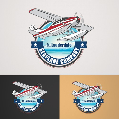 Logo concept for seaplane company.