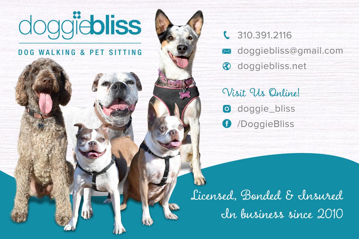 Doggie Bliss Banner