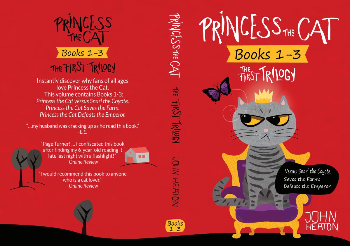 Unique Book Cover Design