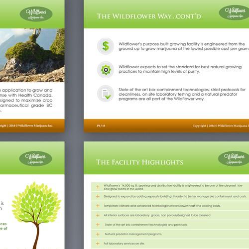 Power Point Presentation for Medical Marijuana Company