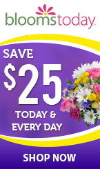American Blooms Yellow Page Ad Redesign
