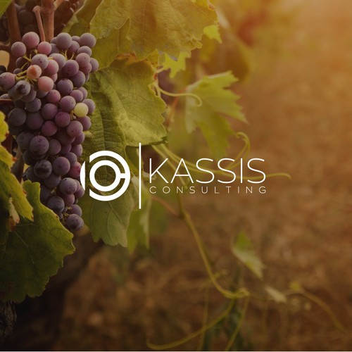 """Create me a logo that screams """"PROFESSIONAL"""" in a lackadaisical industry - wine!"""