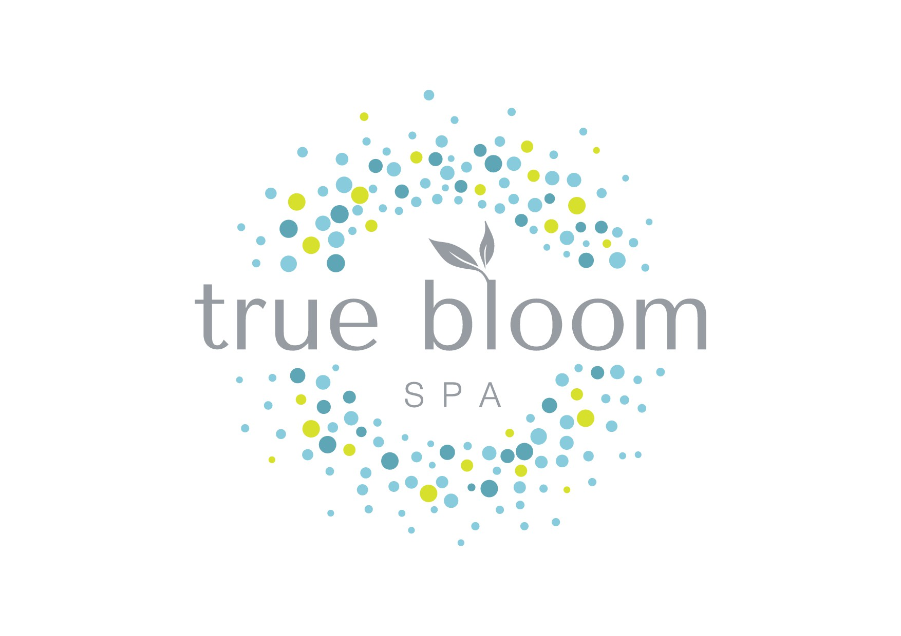 Create Boulder Colorado's brand new, all natural spa logo.