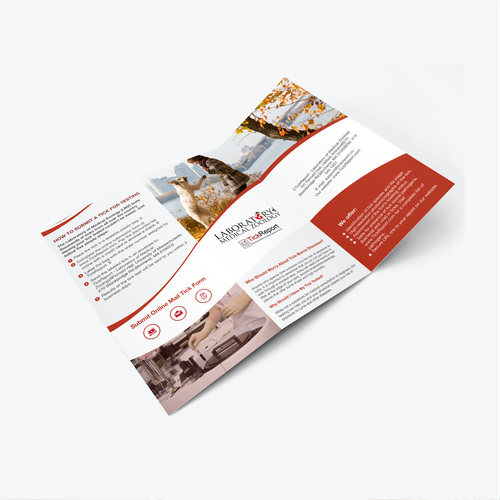 brochure designs forLaboratory of Medical Zoology - TickReport