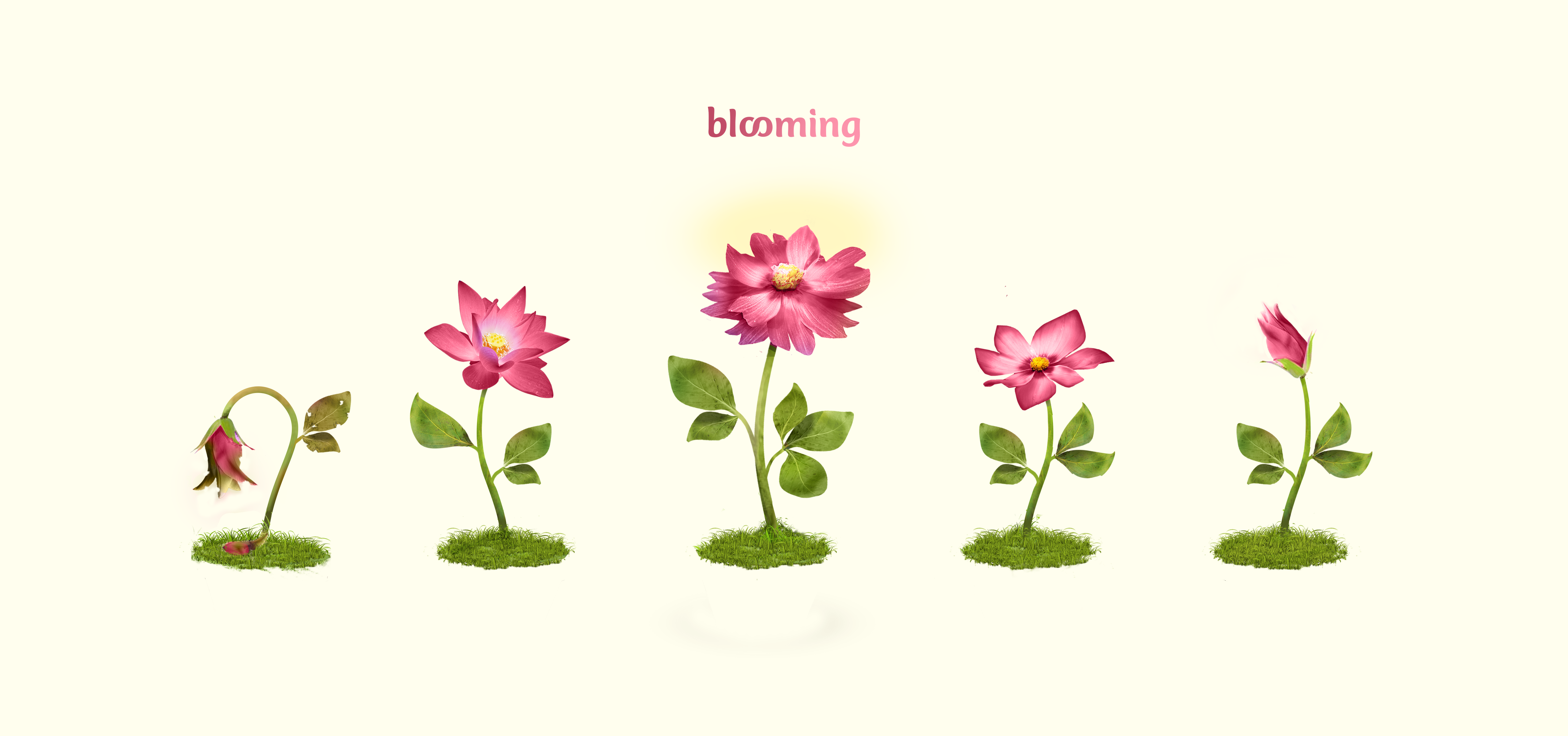 Create an astonishing plant illustration for Blooming