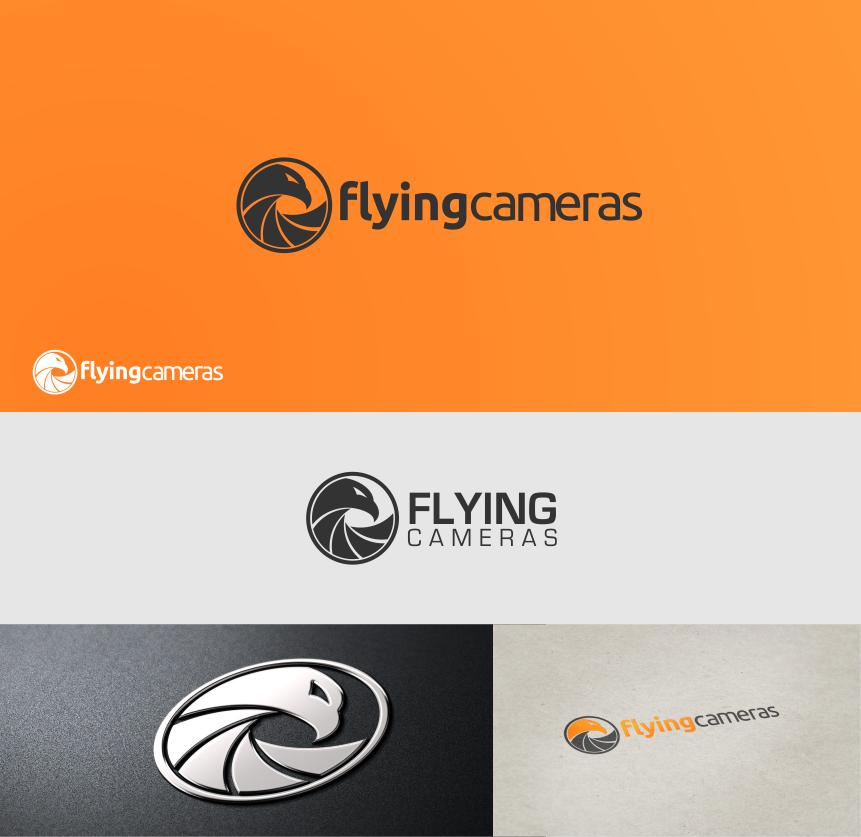 Flying Cameras needs a new logo