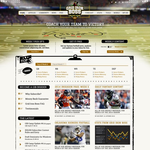 Fantasy football website