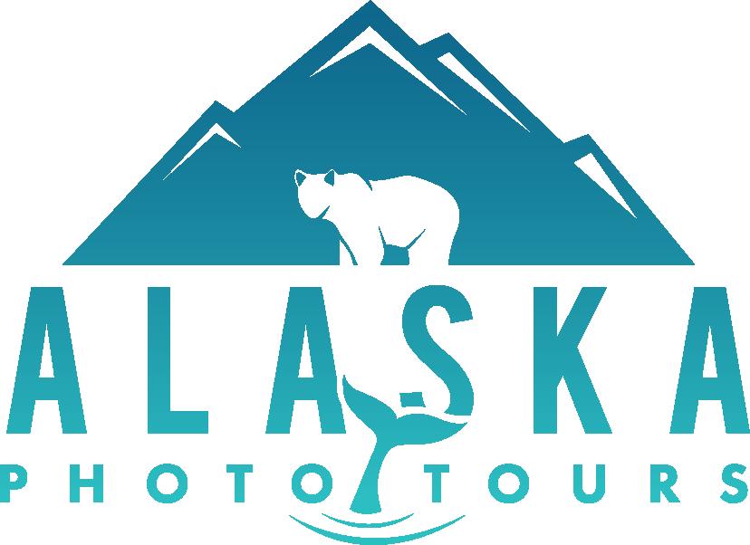 Looking for a dynamic logo that sells Alaska.