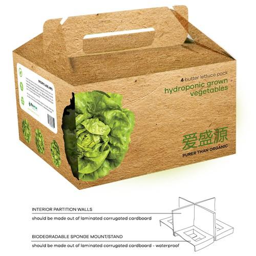 hydroponic veggies box