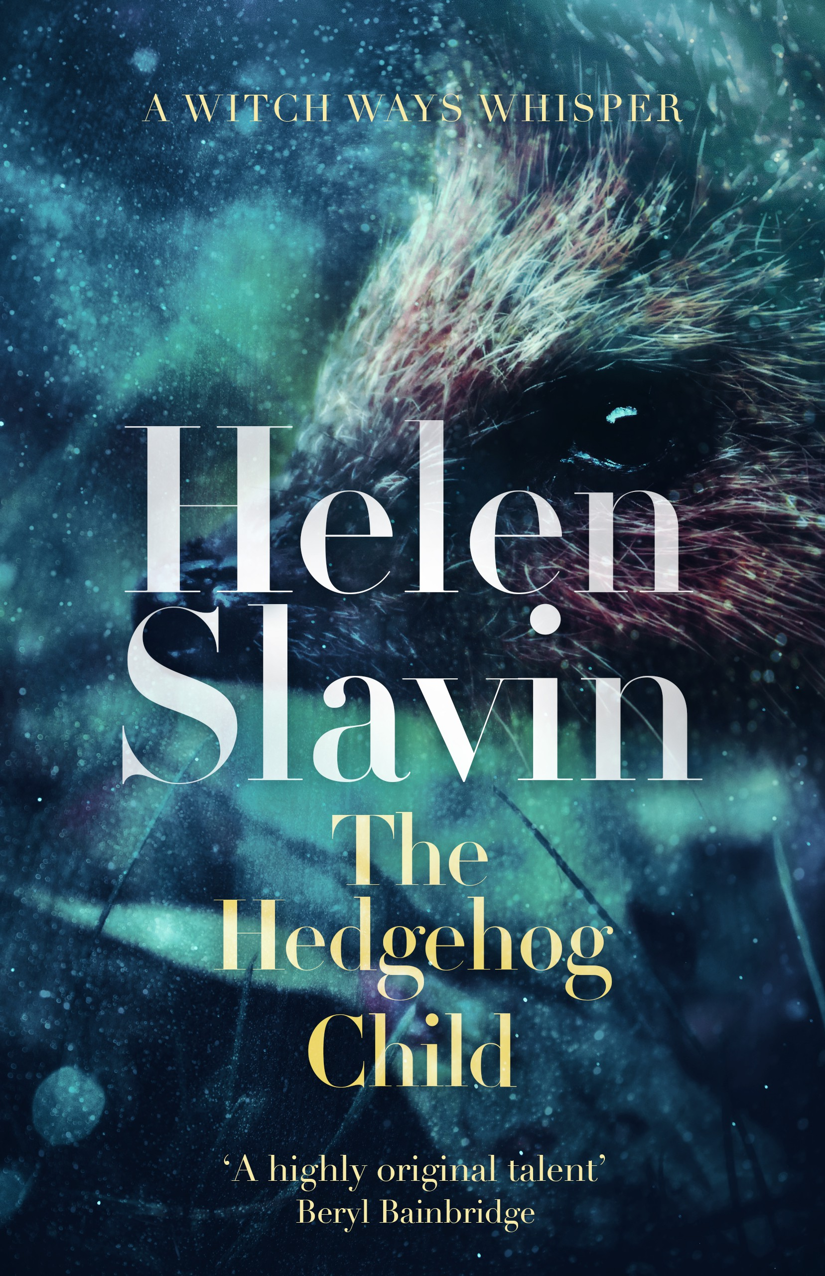 The Hedgehog Child (Witch Ways) eBook Cover