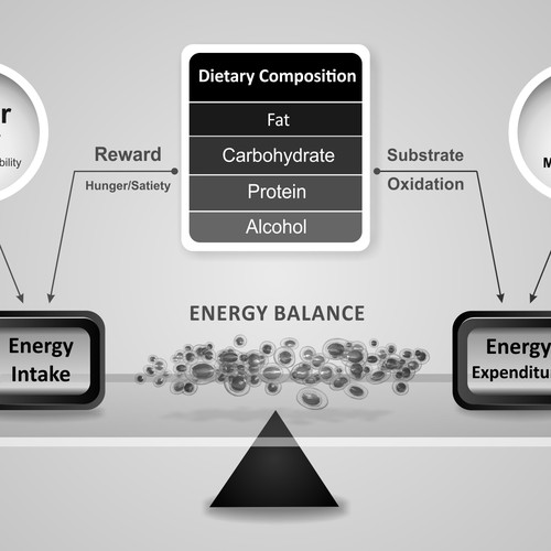 Energy Balanced Graphic Black and White Diagram