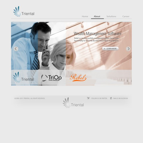 Triental needs a new website design