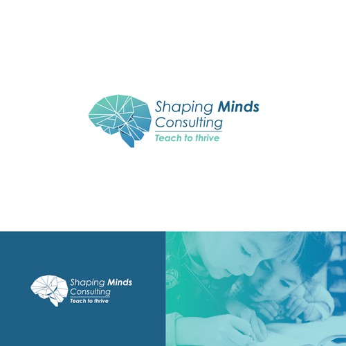 Shaping Minds Consulting-Logo