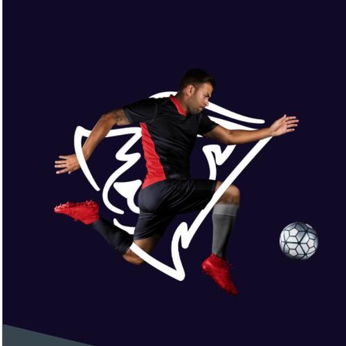 soccer team logo!