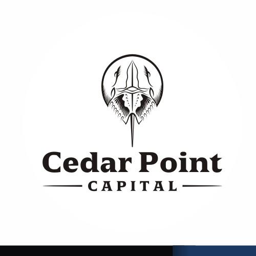 Cedar Point Capital