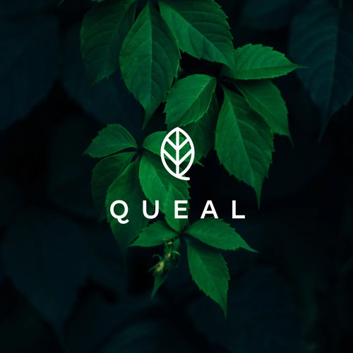 Queal - for SALE!