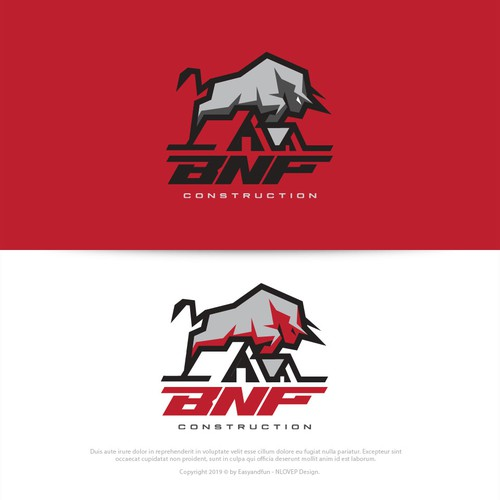 Logo Concept for BNF