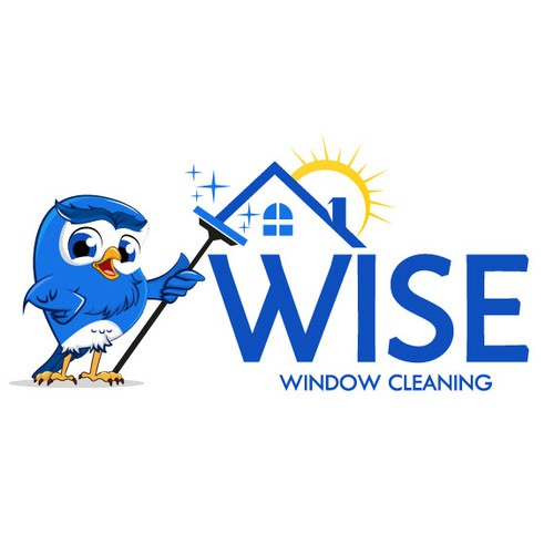 Owl Window cleaning