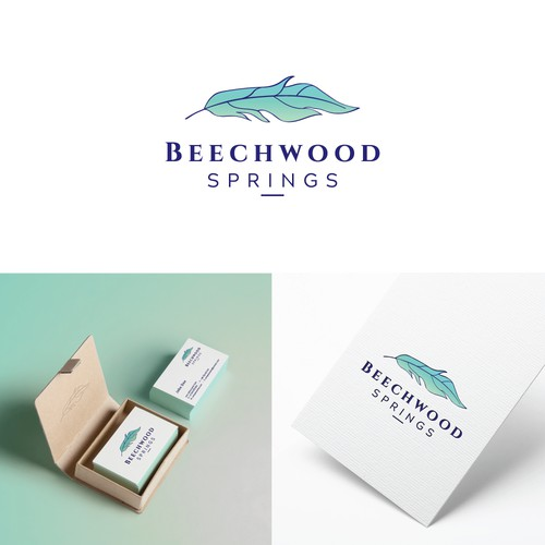Logo for Beechwood Springs