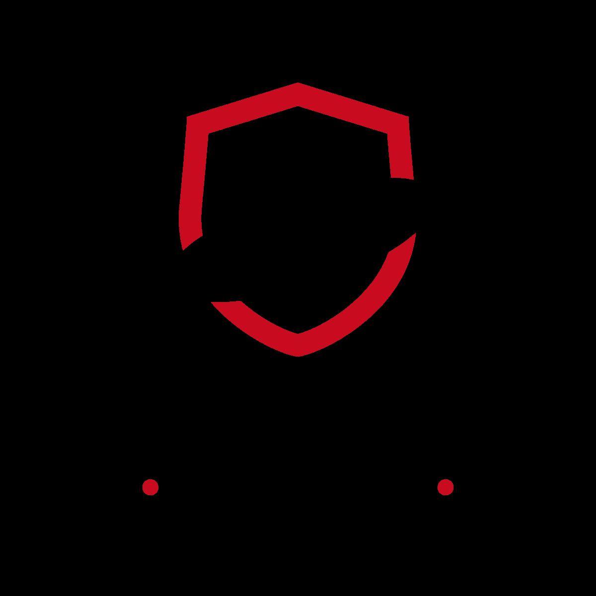 Logo for new division