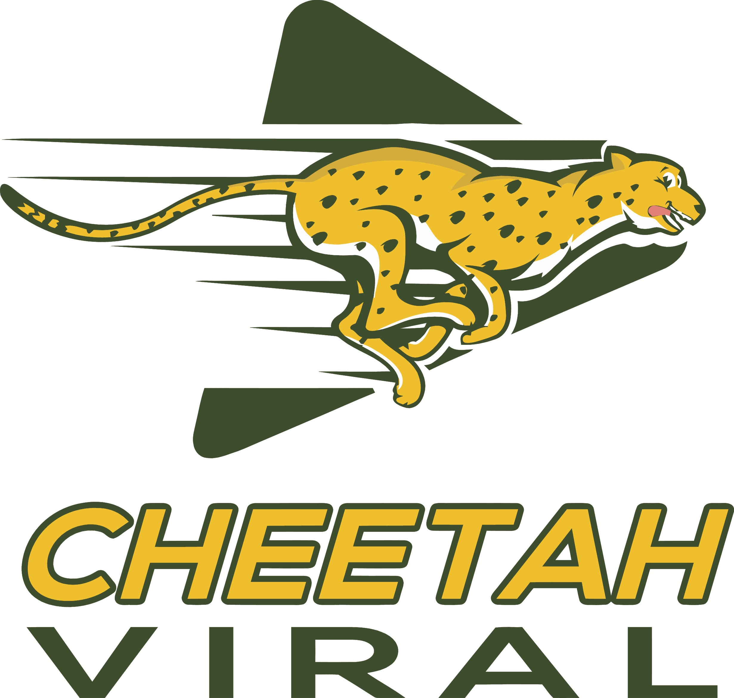 New viral video production company in need of cheetah mascot logo.