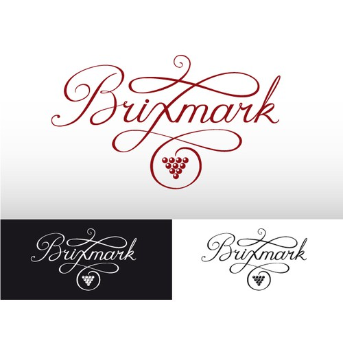 Logo for a hot new wine industry web application