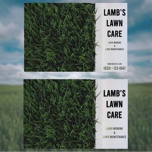 Lamb's lawn care